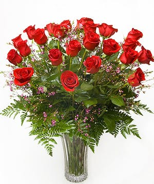 Two Dozen Roses Billngs, MT - Same-day Delivery by Gainan's Flowers
