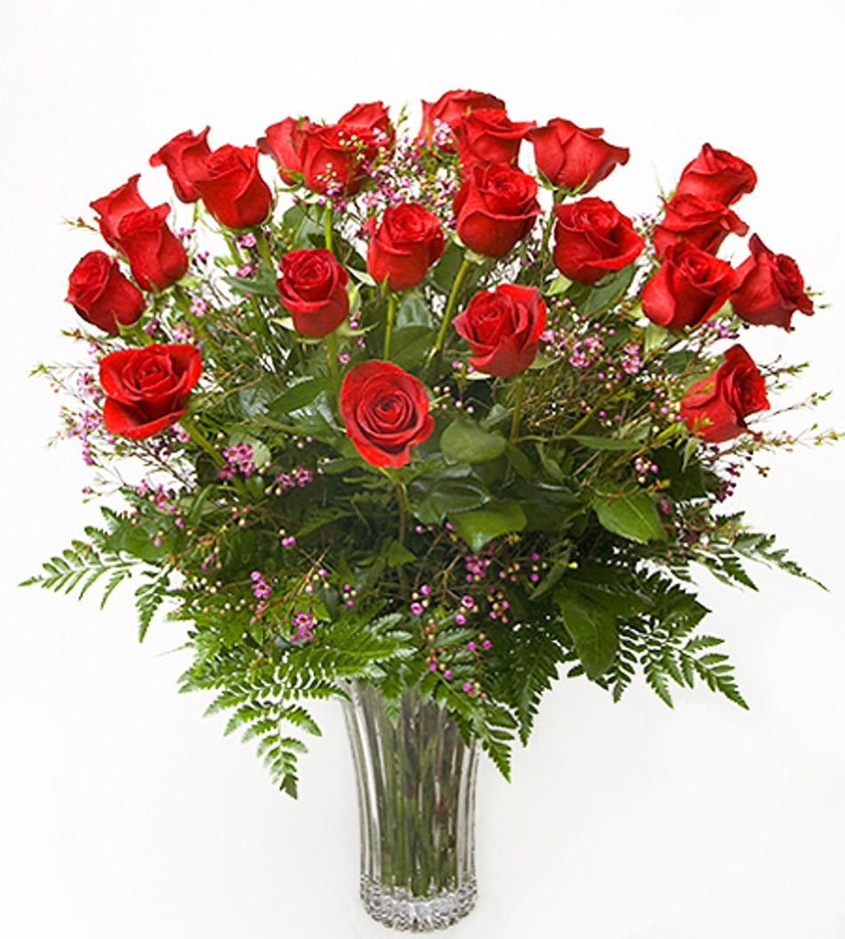 Two Dozen Roses Billngs Mt Same Day Delivery By Gainans Flowers