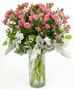 A bouquet of spray roses with dusty miller and bupleurum.