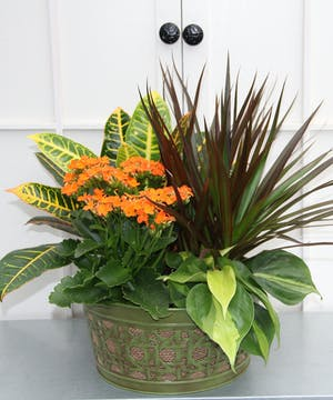 A vibrant fall-hued kalanchoe gives a seasonal look to this mix of easy care plants in a round metal lattice and burlap container, this garden will brighten anyone's day.