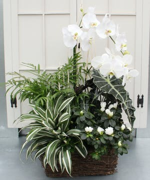 Promote calm and respite by sending this artfully designed garden for a funeral service or to a family at home.