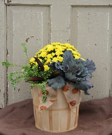 This bushel basket holds a colorful mix of fall blooming plants.  This outdoor planter will brighten any entry way.  Safe to 25 degrees.