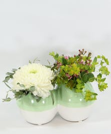 A duo vase filled with a white chrysanthemum , bupleurum, waxflower and eucalyptus.