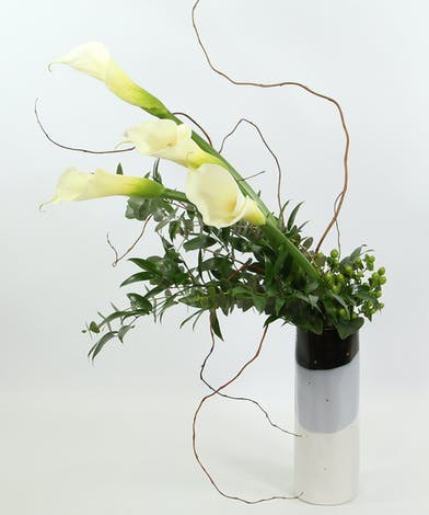 Four calla lilies artfully designed with Italian ruscus, curly willow, green hypericum and silver dollar eucalyptus in a unique tri-color vase.