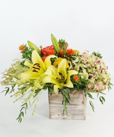 Low and lush, this European-style of antique hydrangea, fragrant Oriental lilies, garden roses with seasonal accents of yarrow, safflower and broom corn in a wood cube.