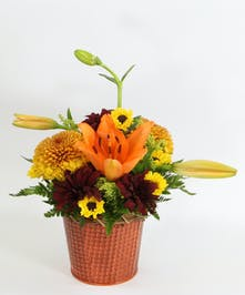 A metal tin overflows with fall blossoms featuring an Asiatic lily, disbuds, Viking poms and fall daisies.