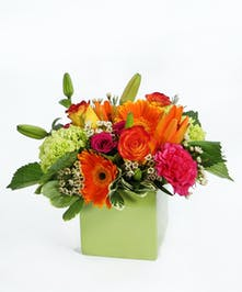 A bright modern bouquet of orange Asiatic lilies, spray roses, mini green hydrangea, hot pink carnations, gerbera daisies with accents in a green cube.