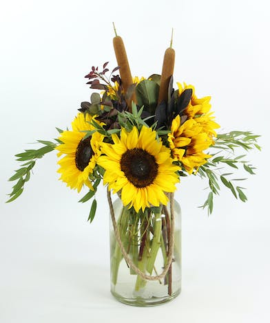Eight sunflowers with smoke bush and cattails in a vase with a rope accent.