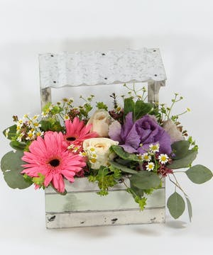 A whimsical window box filled gerbera daisies, fragrant garden roses, kale and accents.