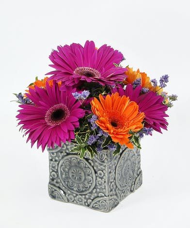 Gerbera daisies with accents fill a blue mosaic cube.