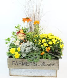 Gainan's Fall Outdoor Planter